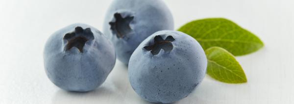 BC blueberries are now in season
