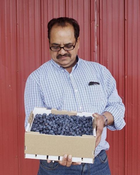 Anand Aujlay holding a box of his farm's blueberries.